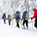 5 Consejos sobre raquetas de nieve