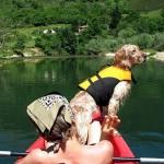 Descenso del Sella con tu perro